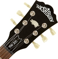 Roger Waters | Washburn RW300 signature model